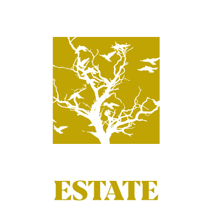 ghost.estate Logo